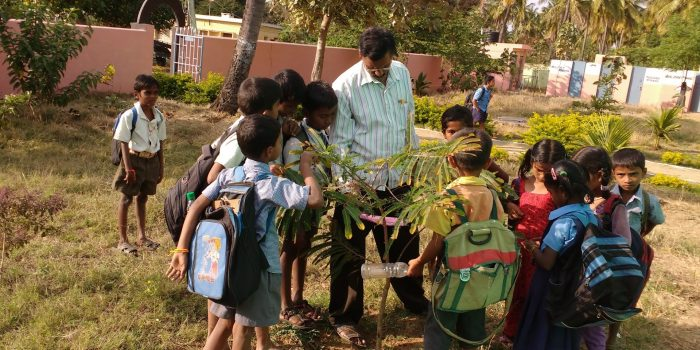 Eco-Friendly Schools and Environmental Education